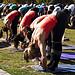 yoga class schedule philadelphia